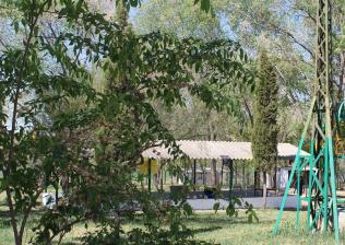 Campamento Multiaventura en la Comunidad de Madrid