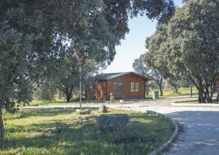 Campamento inglés y multiaventura en La Cabaña del Alberche-12