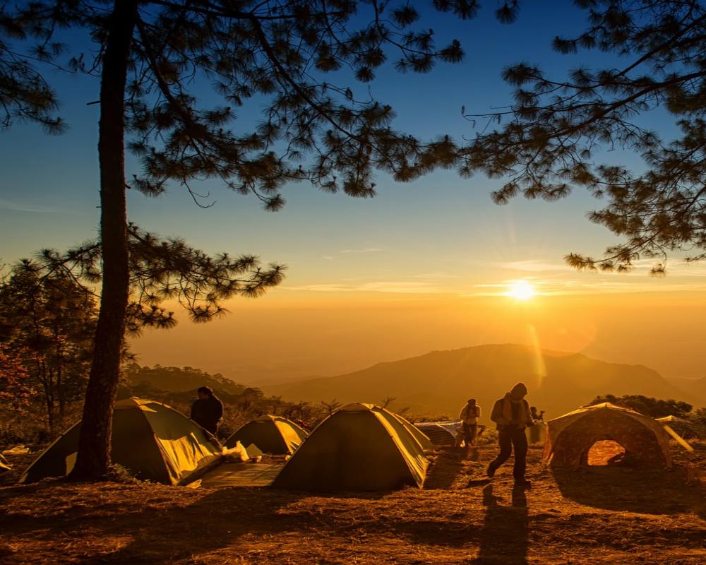"""Campamento de Aventura para Pequeñ@s Aventurer@s """"NORTH EXPLORER"""""""
